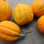 orange acorn squash