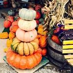 Pumpkin Topiary Stack